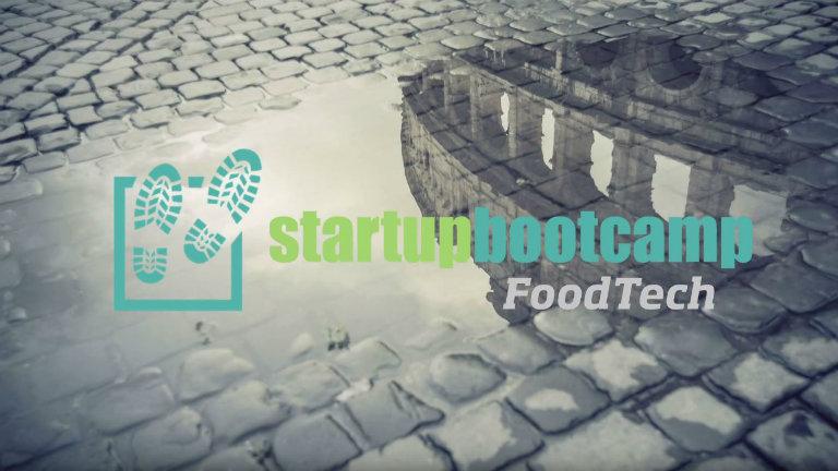 Startup: perché entrare nel primo acceleratore verticale sul Food