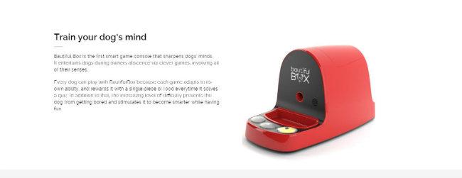 bautifulbox