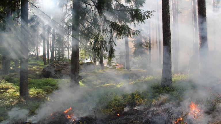 ItaliaAFuoco: la mappa sugli incendi interattiva e open
