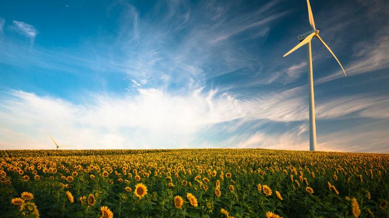 Energia pulita: le startup leader in Italia